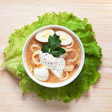 Куриный суп с домодельными лапшами Стоковая Фотография RF