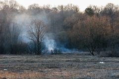 Курите от горящей травы ` s last year на банке потока Лес огня весной на заходе солнца в апреле silhouettes валы Стоковая Фотография