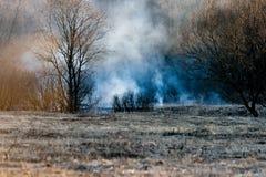 Курите от горящей травы ` s last year на банке потока Лес огня весной на заходе солнца в апреле silhouettes валы Стоковая Фотография RF