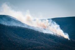 Курите от лесного пожара в национальном парке Shenandoah, Вирджинии стоковое фото