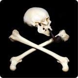 курить черепа Стоковое Фото