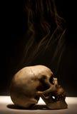 курить черепа Стоковое фото RF