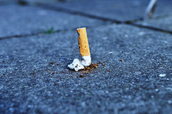 курить Стоковое Изображение