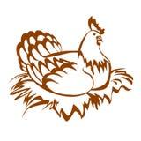 Курица в гнезде Стоковые Изображения