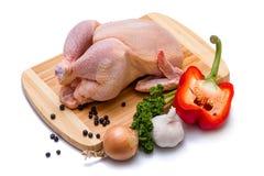 Курица и овощи стоковое изображение