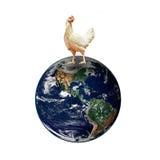 Курица на мире планеты Элементы этого изображения поставленные NASA стоковые изображения