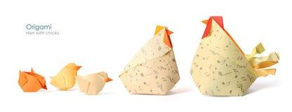 курица одно цыпленоков различная они, котор нужно хотеть Стоковое Фото