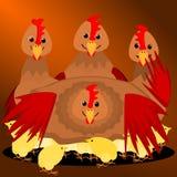 Курица с цыпленоками младенца Стоковая Фотография