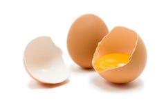 курицы яичка Стоковая Фотография