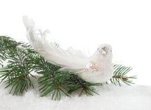 куропатка рождества стоковое фото rf