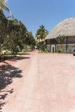 Курортный отель на острове Занзибара стоковые изображения rf