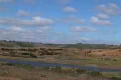 Курорт гольфа и озеро стоковые изображения rf