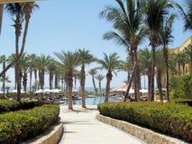 Курорт и курорт гольфа сюит Los Cabos мечт в Мексике Стоковое Изображение