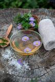 Курорт и установка здоровья с солью моря, сутью масла, цветками и Стоковые Фотографии RF