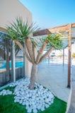 Курорт на Мальте Стоковое Изображение RF