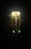 курорт ночи светильника здоровья belokurikha altay снял улицу Сибиря стоковая фотография