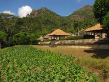курорт amanwana 2 стоковое изображение
