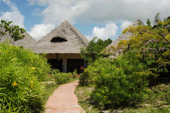 курорт zanzibar стоковые изображения rf
