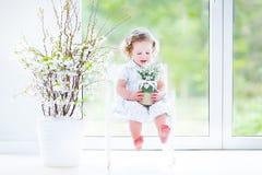 Курчавая девушка малыша в весне белого платья первой цветет Стоковые Изображения RF