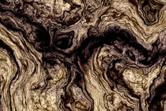 Курчавая деревянная текстура Стоковые Фотографии RF
