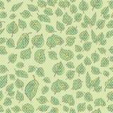 курчавый зеленый цвет выходит безшовная swampy текстура Стоковое Изображение RF