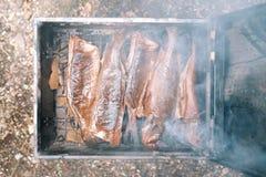 курят решетка рыб, котор Барбекю outdoors Стоковое Изображение RF