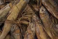 Курят рыбы Стоковое Изображение RF