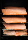 Курят рыбы Стоковое Фото