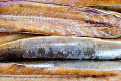 Курят рыбы Стоковое Изображение