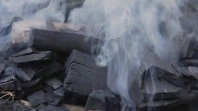 Куря уголь сток-видео