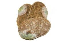 3 куска mouldy хлеба рож изолированного на белой предпосылке Взгляд сверху Стоковые Фотографии RF