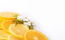 куски апельсина и лимона изолированных на белой предпосылке Стоковая Фотография