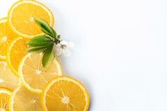 куски апельсина и лимона изолированных на белой предпосылке Стоковое Изображение