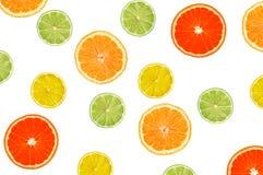 Куски апельсина, лимона, известки и грейпфрута изолированных на белизне Стоковые Фотографии RF