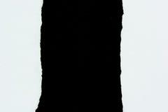 Куски бумаги белой бумаги разрыва на черноте Стоковые Изображения RF