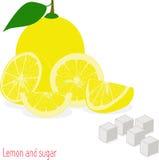 Куски лимона и сахар, собрание иллюстраций Стоковые Изображения RF