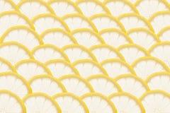 Куски лимона на белой предпосылке Картина Макрос Стоковое Изображение RF