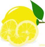 Куски лимона, собрание иллюстраций Стоковое Изображение RF