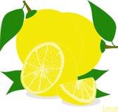 Куски лимона, собрание иллюстраций Стоковая Фотография