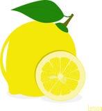 Куски лимона, собрание иллюстраций Стоковые Фотографии RF