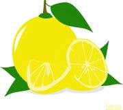 Куски лимона, собрание иллюстраций Стоковые Изображения