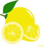 Куски лимона, собрание иллюстраций Стоковое Изображение
