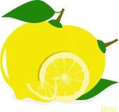 Куски лимона, собрание иллюстраций Стоковое Фото