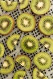 Куски кивиа на листе, который нужно высушить как предпосылка Стоковые Фотографии RF