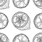 Куски лимонов Безшовная картина с плодоовощами нарисованными рукой Черно-белая иллюстрация для книжка-раскраски Стоковое Фото