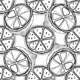 Куски лимонов Безшовная картина с плодоовощами нарисованными рукой Черно-белая иллюстрация для книжка-раскраски Стоковая Фотография
