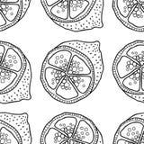 Куски лимонов Безшовная картина с плодоовощами нарисованными рукой Черно-белая иллюстрация для книжка-раскраски Стоковая Фотография RF