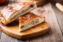 Куски пирога капусты и гриба с сыром Стоковые Фотографии RF