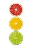 Куски плодоовощей розового грейпфрута, лимона и известки изолированных на белой предпосылке Стоковые Изображения