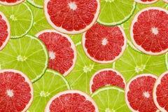 Куски свежей картины известки и грейпфрута безшовной Стоковые Фотографии RF